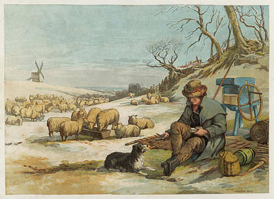 Fence Drawing - A Shepherd And His Dog Sit by Mary Evans Picture Library
