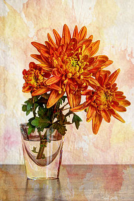 Photograph - A Shot Of Mums by Heidi Smith