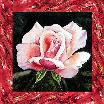 Roses Royalty-Free and Rights-Managed Images - A Single Rose Mellow Pink by Irina Sztukowski
