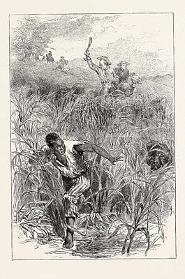 Slaves Drawing - A Slave Hunt, United States Of America by American School
