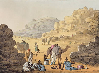 Camel Drawing - A Slave Kaffle, From Narrative by Captain George Francis Lyon