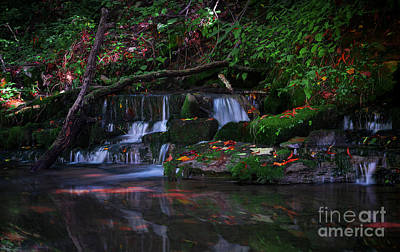 Photograph - A Small Fall by Wayne Stacy