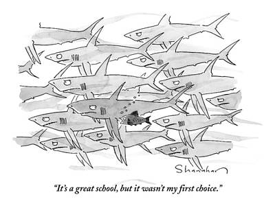 Reef Shark Drawing - A Smaller Fish Is Talking To Other Larger Fish by Danny Shanahan