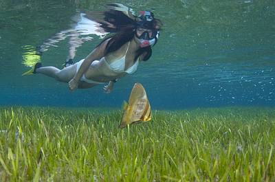 Ephippidae Photograph - A Snorkeler With Juvenile Batfish by Science Photo Library