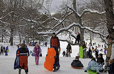 Wintry Landscape Photograph - A Snow Day In The Park by Madeline Ellis