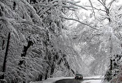 Photograph - A Snowy Drive Through Chestnut Ridge Park by Rose Santuci-Sofranko
