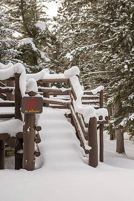 Itasca State Park Photograph - A Snowy Fire Escape by Tim Grams
