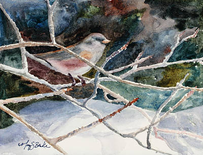 A Snowy Perch Art Print by Mary Benke