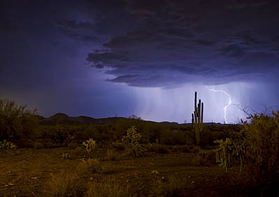 A Sonoran Desert Storm  Art Print by Saija  Lehtonen