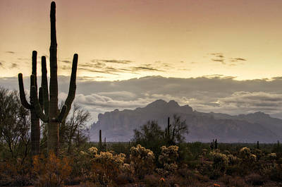 The Superstitions Photograph - A Sonoran Morning  by Saija  Lehtonen