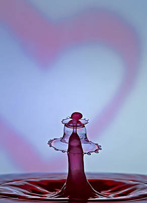Photograph - A Splash Of Love by Susan Candelario