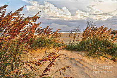 Sand Dunes Painting - A Splendid Day At The Beach - Outer Banks by Dan Carmichael