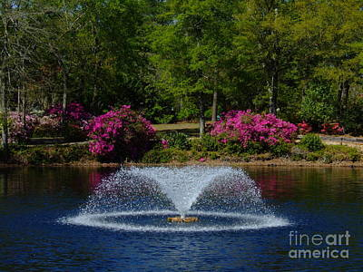 Photograph - A Spring Fountain by Bob Sample