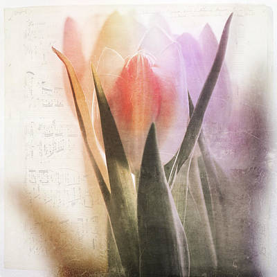 Interior Decoration Mixed Media - A Spring Song by Heike Hultsch