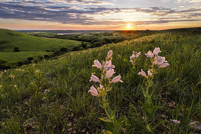 Scott Bean Rights Managed Images - A Spring Sunset in the Flint Hills Royalty-Free Image by Scott Bean
