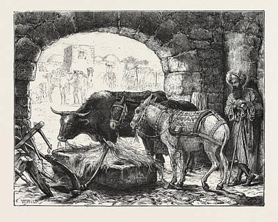 A Stable At Bethlehem Art Print