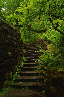 A Stairway To The Green Art Print