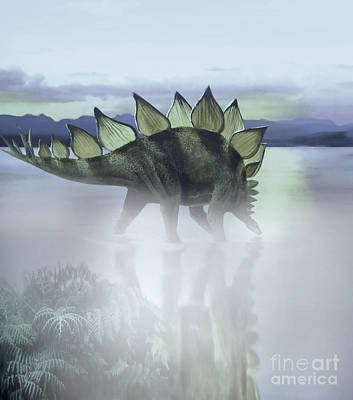 Prehistoric Era Digital Art - A Stegosaurus Dinosaur Grazing by Jan Sovak