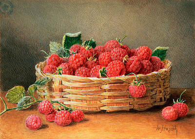 A Still Life Of Raspberries In A Wicker Basket  Art Print by William B Hough