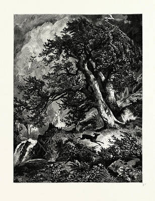 A Storm In The Mountains Art Print