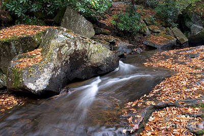 Photograph - A Stream In The Fall by Jeannette Hunt