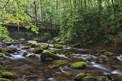 Photograph - A Stream Runs Thru It by Shari Jardina