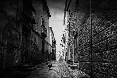 Zamora Photograph - A Street In The Old Zamora by Jose C. Lobato