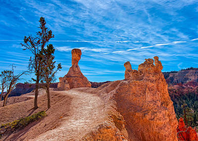 Photograph - A Stroll In Bryce by John M Bailey
