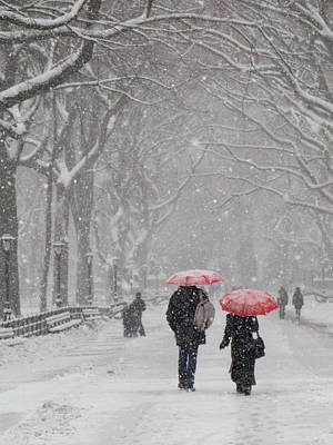 Photograph - A Stroll In The Snow by Cornelis Verwaal