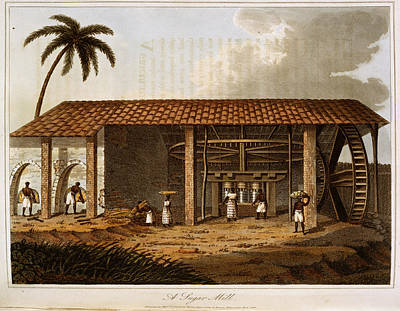 Slaves Photograph - A Sugar Mill by British Library
