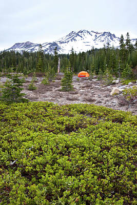 Mt Shasta Photograph - A Summer Day Camping At The Foot Of Mt by Joshua Huber