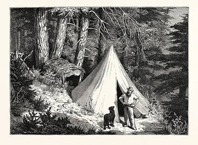 Vancouver Drawing - A Summer Encampment In A North Pacific Forest Copper by English School