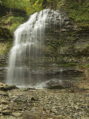 A Summer Walk To Tiffany Falls Print by Phill Doherty