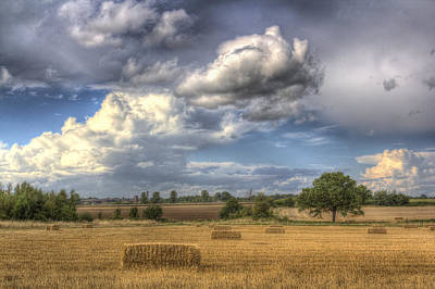 Photograph - A Summers Evening Farm by David Pyatt