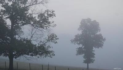 Photograph - A Summer's Fog by Maria Urso