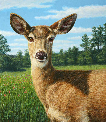 Doe Painting - A Sunny Doe by James W Johnson