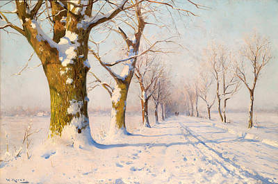 A Sunny Winter's Day Art Print by Mountain Dreams