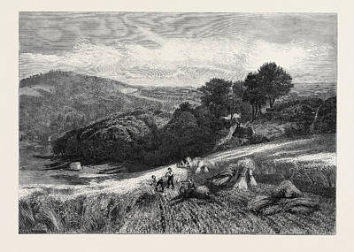 A Surrey Cornfield From The Exhibition Of The Society Art Print by English School