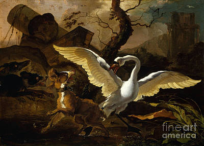 A Swan Enraged By Hondius Art Print