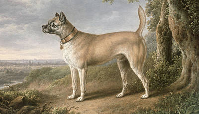 Dog In Landscape Painting - A Terrier On A Path In A Wooded Landscape by Charles Towne