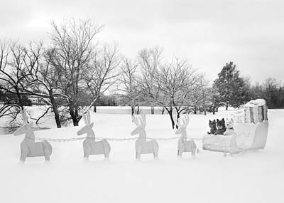 Photograph - A Terrier Sleigh Ride by Heidi Marcinik