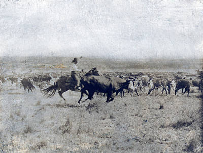 Cattle Drive Photograph - A Texas Cowboy On Horseback Separating by Everett