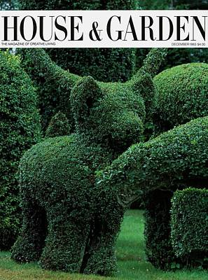 Photograph - A Topiary Bear In Alice Braytons Green Animals by Horst P. Horst
