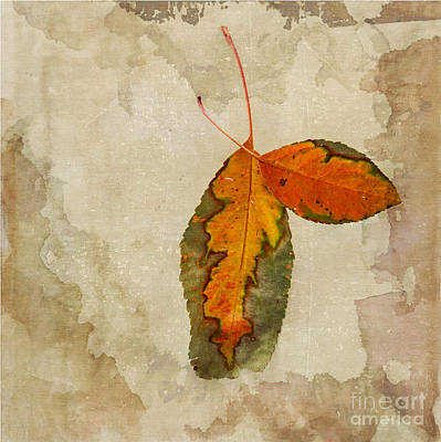 Of Autumn Photograph - A Touch Of Autumn #2 by Betty LaRue