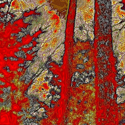 Reds Of Autumn Digital Art - A Touch Of Autumn Abstract Vi by David Patterson