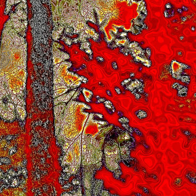Of Autumn Photograph - A Touch Of Autumn Abstract Vii by David Patterson