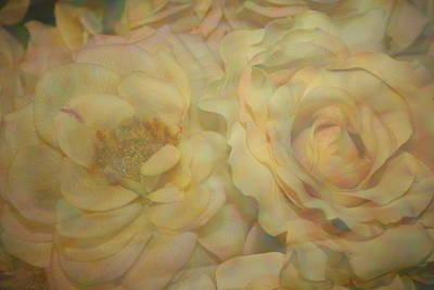 A Touch Of Color - Impressionistic Roses Original