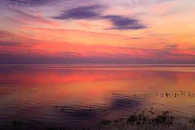 Hues Of Purple Photograph - A Touch Of Morning by Rachel Cohen