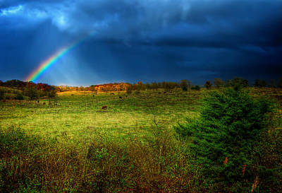 Photograph - A Touch Of Rainbow by Mark Andrew Thomas