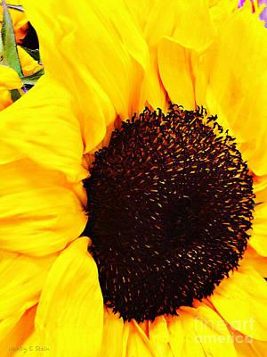 State Love Nancy Ingersoll - A Touch Of Summer by Nancy Stein